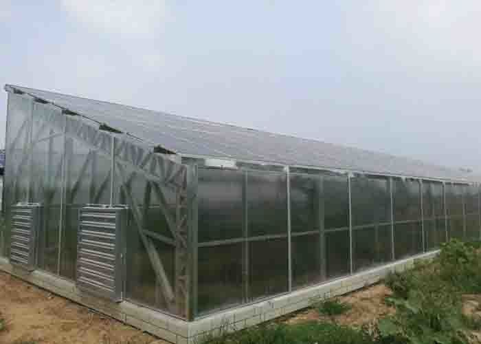 Seed Breeding Photovoltaic Power System PC Sheet Cover Material 8 - 12 M Span